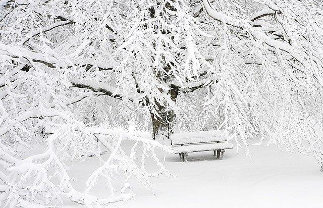 Sneh v zime.jpg